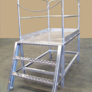 WCSM - Safety Ladder (2)