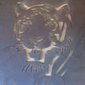 WCSM - Tiger